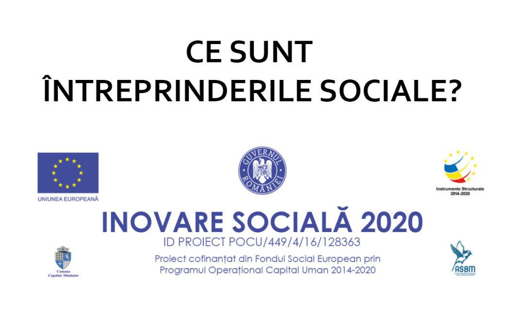 Ce sunt întreprinderile sociale?